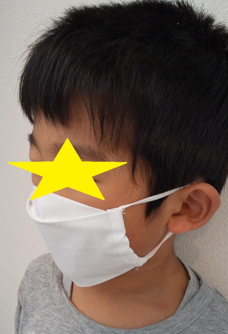の マスク 作り方 の 大臣